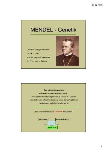 MENDEL-Genetik