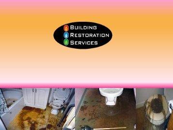 www.carpetwaterdamage.com.au