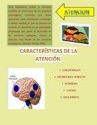 revista psicofisiologia - Page 5