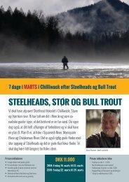 Chilliwack - Steelheads i marts