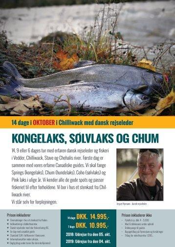 Chilliwack - kongelaks og sølvlaks i oktober