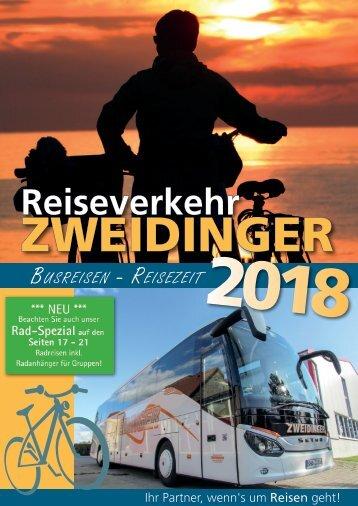 Reiseverkehr Zweidinger Katalog 2018