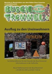 fÜR DRUCK_Buschtrommel Nr-331
