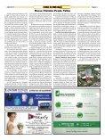 Edição Impressa - Agosto/2015 - Page 5