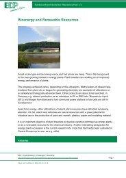 Bioenergy and Renewable Resources