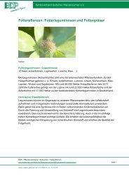 Futterpflanzen: Futterleguminosen und Futtergräser