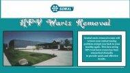 Best Genital Wart Remover | WartCream