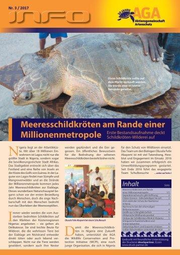 Meeresschildkröten am Rande einer Millionenmetropole
