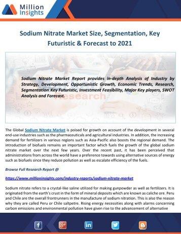 Sodium Nitrate Market Size, Segmentation, Key Futuristic & Forecast to 2021