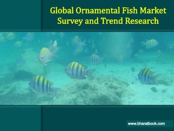 Global Ornamental Fish Market Survey and Trend Research