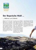 Wellness und Genuss im Bayerischen Wald - Seite 2