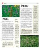 NR2_cały - Page 6