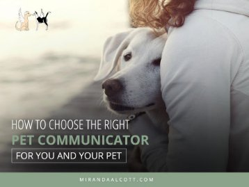 How to Choose the Right Pet Communicator in Albuquerque