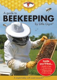 A Guide To Beekeeping