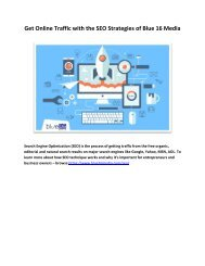 Get Online Traffic with the SEO Strategies of Blue 16 Media