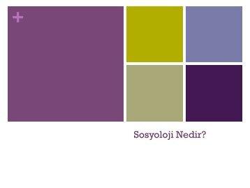 Sosyoloji Nedir (2)