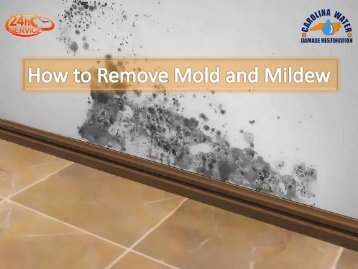 How to Remove Mold and Mildew