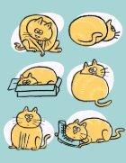 Big Cat - Page 2