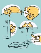 Big Cat - Page 3