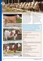 WELT_148_Internet - Seite 6