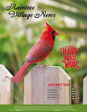 Raintree Village January 2018