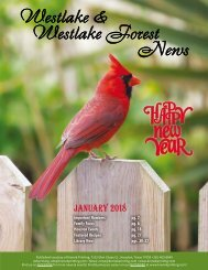 Westlake Forest January 2018
