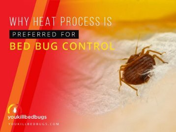 Benefits of Bed Bugs Heat Treatment Edmonton
