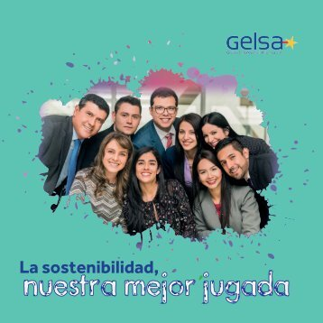 GELSA - INFORME DE SOSTENIBILIDAD 2016_WEB