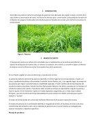 manual 1 conservacion de patos y forrajes - Page 3