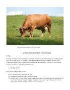 manual 1 conservacion de patos y forrajes - Page 7