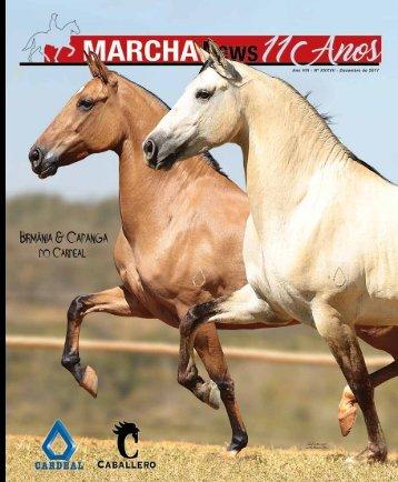 Revista Completa 37