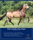 Revista Completa 37 - Page 7