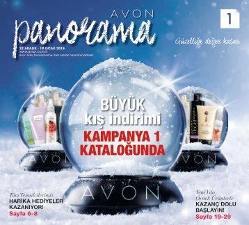 2018_c01_panorama
