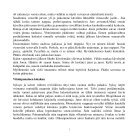 Kirja - Page 3