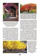 Edição PDF - Page 7