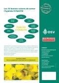 DYNASTIE - Sem-Partners - Page 4