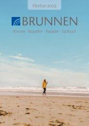 Brunnen Sachbuch