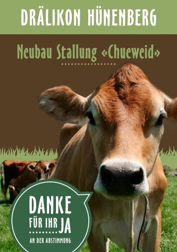 WEB3_Chueweid_Flyer_12-2017