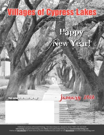 Villages of Cypress Lakes January 2018