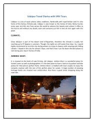 Udaipur Travel Diaries with VNV Tours