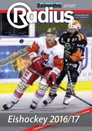 Eishockey 2016/17