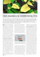 O7 Daun Dezember 2017 - Seite 4