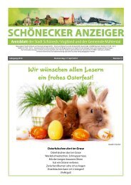 Schönecker Anzeiger April 2014