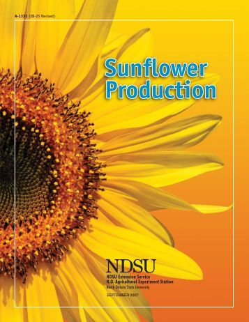 """Sunflower Production Field Guide - Your """"Home Page"""""""