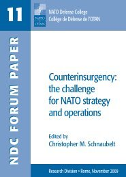 Counterinsurgency: the challenge for NATO strategy and operations