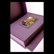 The Chrysalis Project - Boxed Set