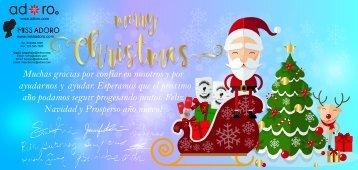 2017 christmas card - sp1