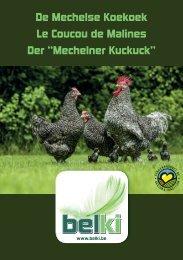 mkk brochure turnpages