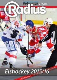 Radius Eishockey 15_16