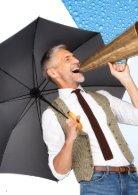 Schirme Katalog - Seite 2